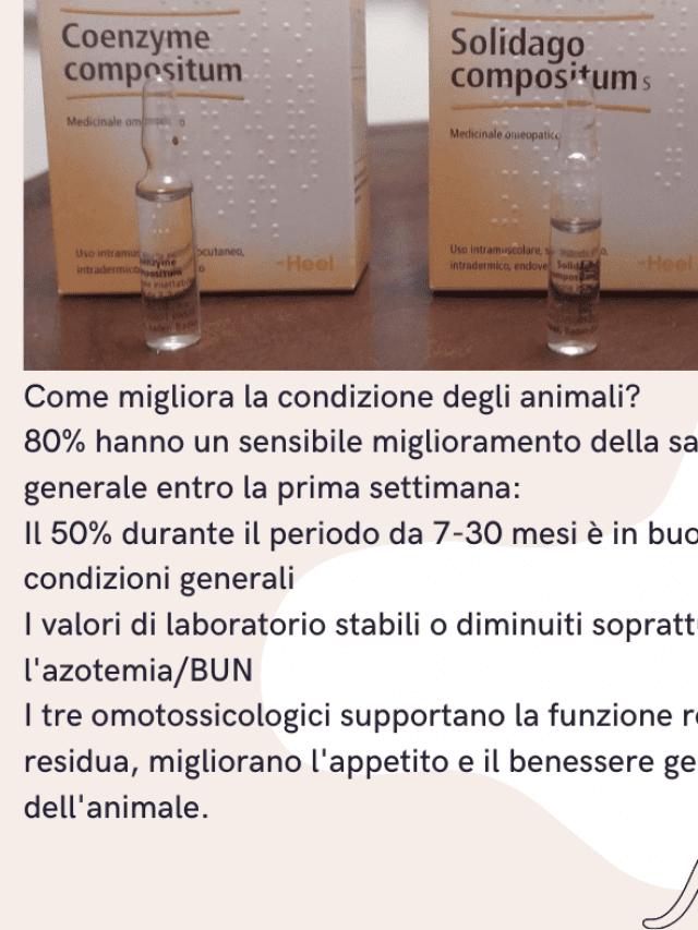 Protocollo Heel gatto cane Update 2021